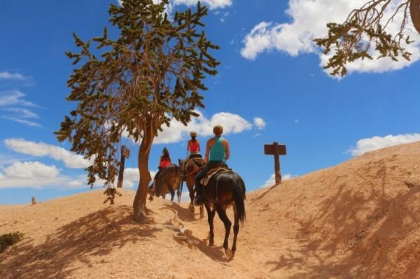 Bryce Canyon paardrijden