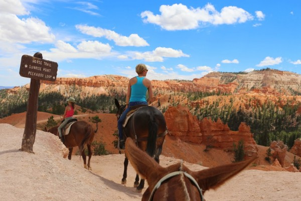 Paardrijden Bryce Canyon National Park