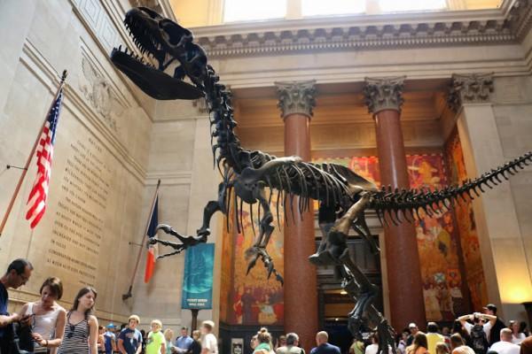 Central Park Museum