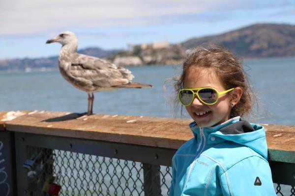 Reisverslag San Francisco Pier 39 vogel