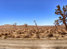 route naar Las Vegas