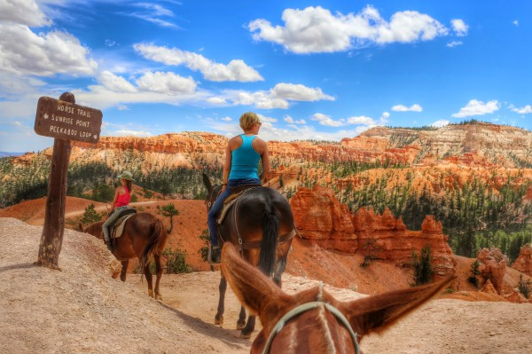 Horse Trail Bryce Canyon