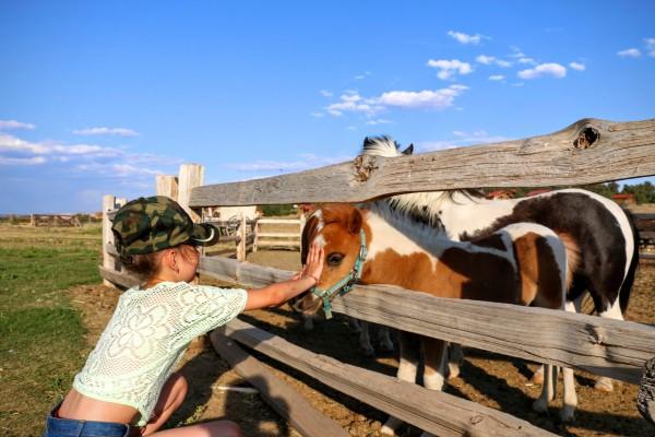 Zion Mountain Ranch kinderen