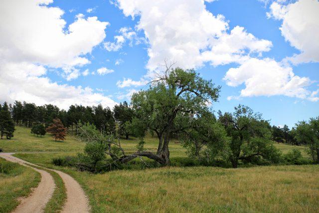 custer-state-park-bezoeken