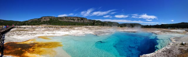 Yellowstone panorama