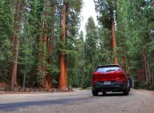 Route van Yosemite naar Sequoia National Park